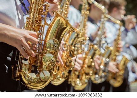 Classic Brass band plays the musical in garden. Musical instrument, brass band and celebration concept Royalty-Free Stock Photo #1099983332