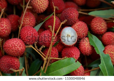Lychee, Fresh lychee and peeled showing the red skin and white flesh with green leaf . #1100048846