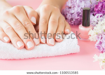 Young, perfect, groomed woman's hands on white towel. Nail varnishing in light pink color. Nails care. Manicure, pedicure beauty salon. Beautiful branches of lilac blossoms. Colorful, fresh flowers.  #1100513585