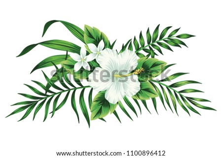 Tropical white hibiscus floral green leaves bouquet. Vector clip art. Jungle illustration