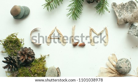 mindfulness calmness unplug concept, word calm from forest natural material Royalty-Free Stock Photo #1101038978