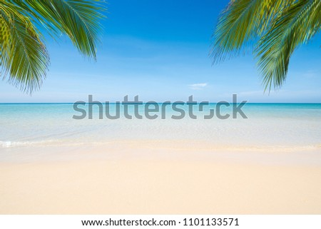 Sea view tropical beach with sunny sky. #1101133571