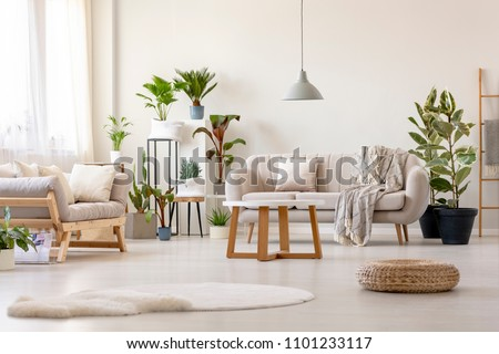 Pouf next to rug in bright living room interior with plants and beige couch. Real photo #1101233117