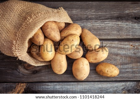 Raw potato food . Fresh potatoes in an old sack on wooden background. Top view #1101418244