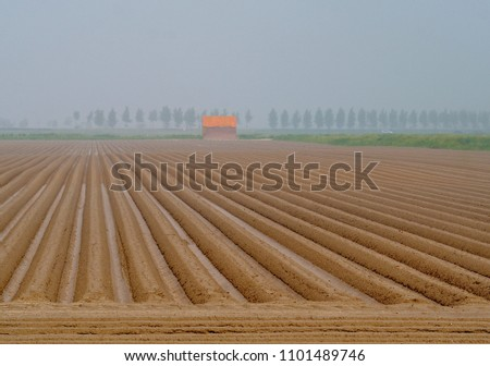 Ploughed fields in summer #1101489746