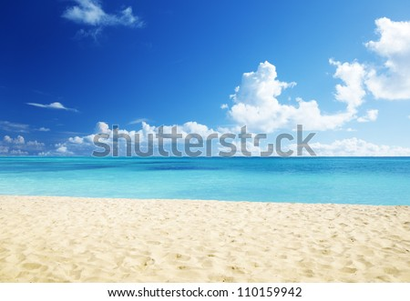 sand of beach caribbean sea #110159942