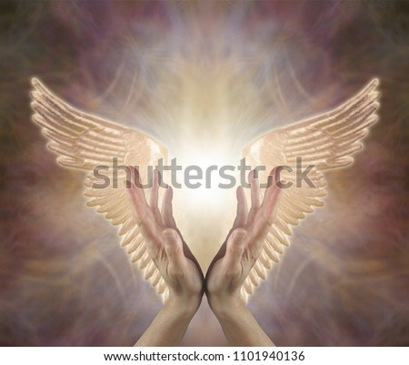 Channeling Angelic Healing Energy - female hands reaching up with Golden Angel wings either side on a warm toned ethereal  background with copy space above   Royalty-Free Stock Photo #1101940136