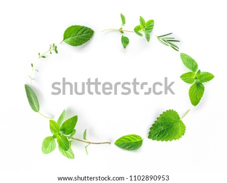 Seamless pattern of fresh herbs and spices basil, sage, rosemary, oregano, thyme, lemon balm, peppermint and mint setup with flat lay on white background #1102890953