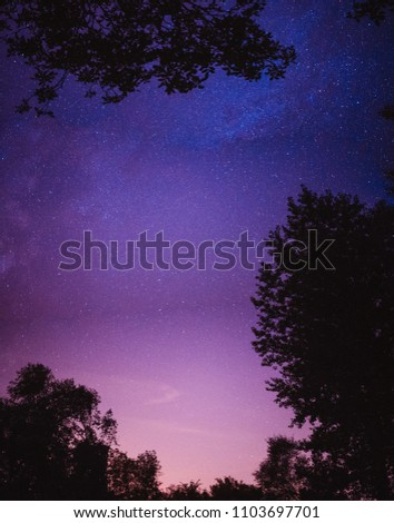 Beautiful view on stars and milky way near forest #1103697701