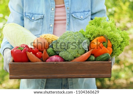 Female hands holding crate with fresh vegetables #1104360629