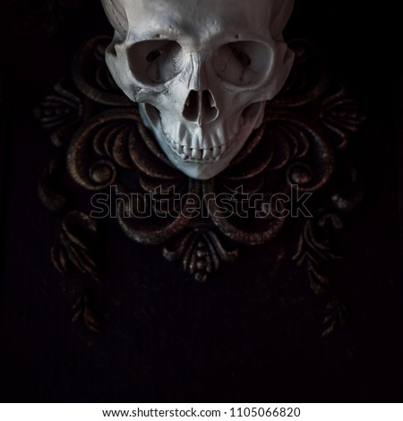 Human skull on the background of patterns. Black background, Halloween concept, free space