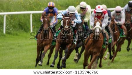 Head on view of galloping race horses and jockeys racing #1105946768