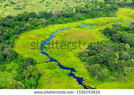 Green river, aerial landscape in Okavango delta, Botswana. Lakes and rivers, view from airplane. Vegetation in South Africa. Trees with water in rainy season.
