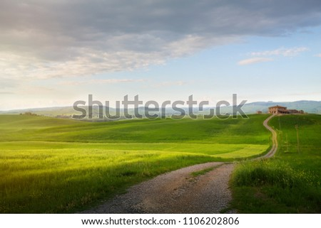 village in tuscany; Italy countryside landscape with Tuscany rolling hills ; sunset over the farm land and country road #1106202806