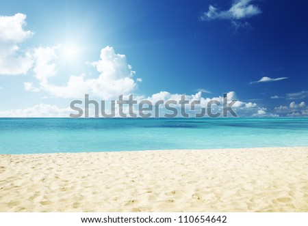 sand of beach caribbean sea #110654642
