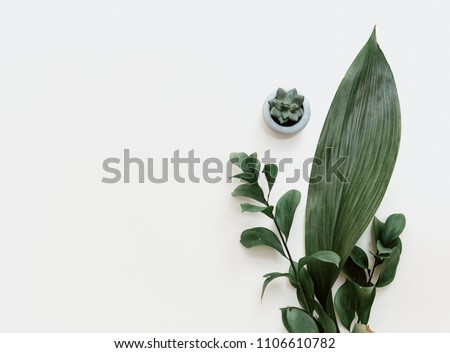 Minimal green leaf on pastel background. Flat lay, top view, copy space  #1106610782