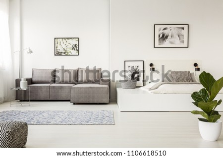 Patterned carpet in front of grey corner couch in open space interior with bed and posters. Real photo #1106618510