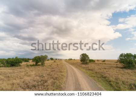 Road to the far land. Photoed in Kenya in October 2016.