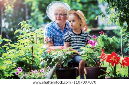 Gardening with kids. Grandmother and her grandchild enjoying in the garden with flowers. Hobbies and leisure, lifestyle, family life #1107097070