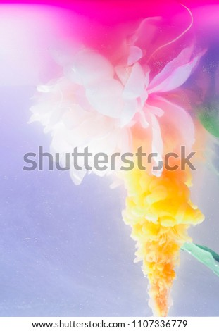 Beautiful isolated flower in water with colorful plumes engulfing and augmenting its shape and structure. a fine rendition.   #1107336779
