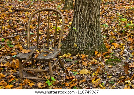 Broken wooden chair sitting in woods next to tree trunk, covered in autumn leaves #110749967