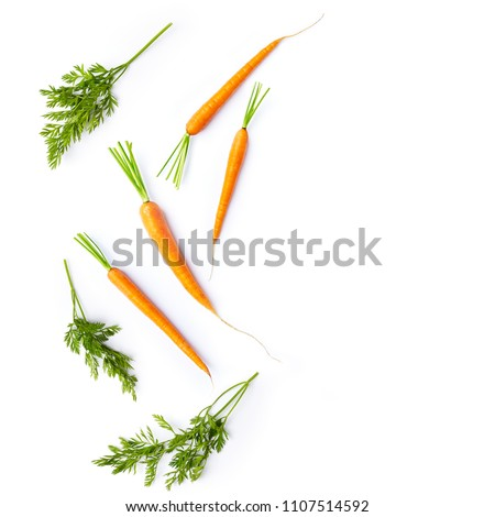 Fresh carrots and carrot stalks on white background; flat lay; organic veggetables #1107514592