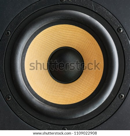Speaker loudspeaker with yellow diffuser. Studio audio monitors #1109022908
