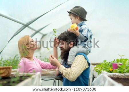 Greenhouse Hydroponic system. Greenhouse structure factory, Manufacture and Build. Glasshouse Restaurant, Glasshouse Megastore. Happy Family in Garden Greenhouses. Greenhouse Market. #1109873600