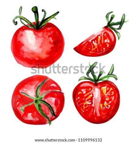 tomato water colour  #1109996132