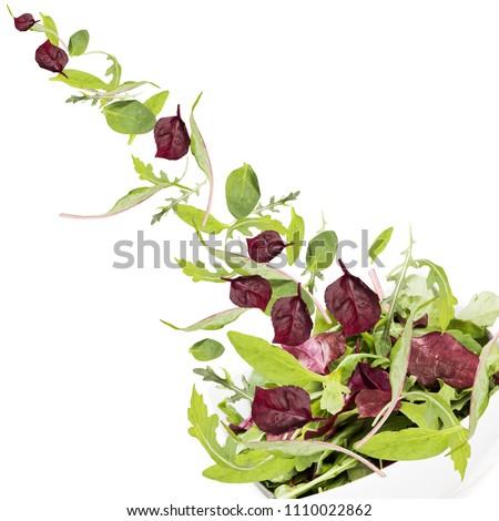 Falling salad in salad bowl. #1110022862