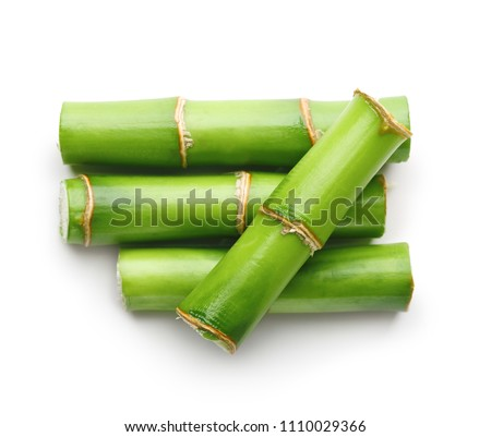 Branches of bamboo isolated on white background #1110029366