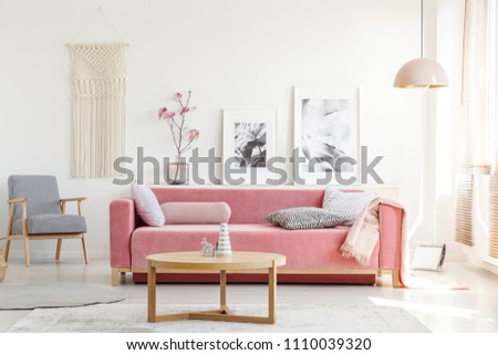 Patterned armchair and pink couch in feminist apartment interior with flowers and posters. Real photo #1110039320