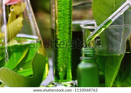 Scientist with natural drug research, Natural organic botany and scientific glassware, Alternative green herb medicine, Natural skin care beauty products, Research and development concept. #1110068762