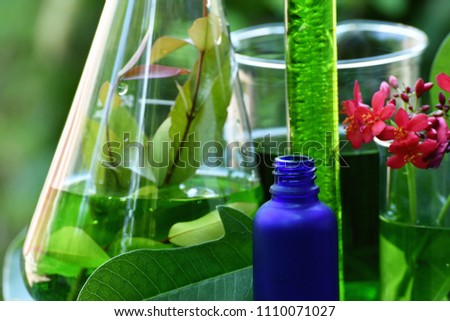 Natural drug research, Natural organic botany and scientific glassware, Alternative green herb medicine, Natural skin care beauty products, Research and development concept. #1110071027