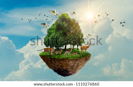 forest tree Wildlife tiger Deer Bird Island Floating in the sky World Environment Day World Conservation Day Earth Day #1110276860