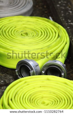 Yellowishwhite bladderwort. Adapter device for sewer system. Water pipes.  #1110282764