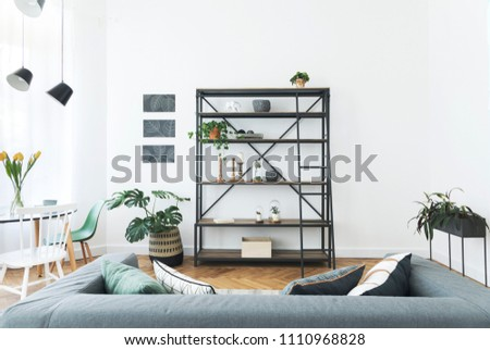 Modern interior of living room with bookstand, stylish sofa and plant. White walls with mock up graphics project. Brown wooden parquet.  #1110968828