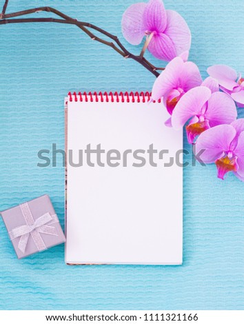 clean sheet of Notepad on blue background, gift box and pink Orchid #1111321166
