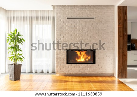 Fireplace on brick wall in bright living room interior of house with plant and windows. Real photo #1111630859