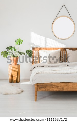 Monstera plant on a tree trunk nightstand and a round mirror above the bed, on a white wall in a sunlit bedroom interior with wooden furniture #1111687172
