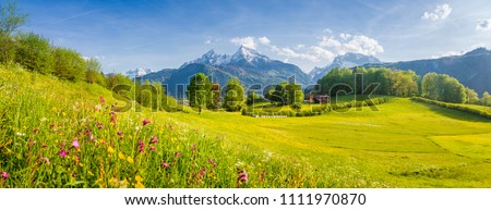 Beautiful view of idyllic alpine mountain scenery with blooming meadows and snowcapped mountain peaks on a beautiful sunny day with blue sky in springtime Royalty-Free Stock Photo #1111970870