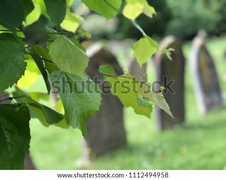 High Wycombe Cemetery #1112494958