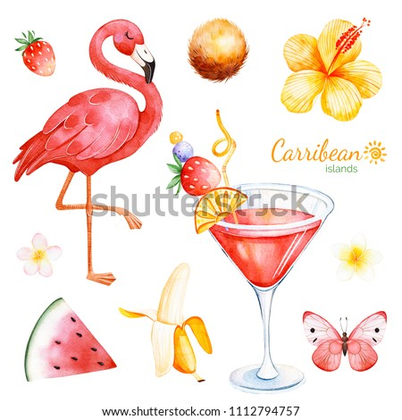 Summer collection with exotic fruits,flamingo,hibiscus flower,tropical butterfly,plumeria flower,cocktail.Perfect for wedding,invitations,greeting card,quotes,pattern,logos,wedding,party etc