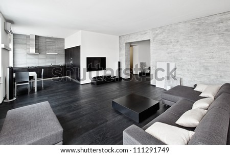 Modern minimalism style drawing-room interior in black and white tones #111291749