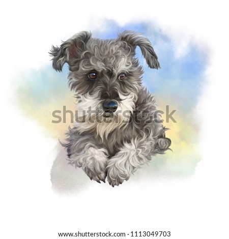 Cute small puppy. Illustration of a Mini Schnauzer. Dog hand painted watercolor illustration. Animal collection: Dogs. Good for print T-shirt, banner, cover, card, pillow. Art background for design.