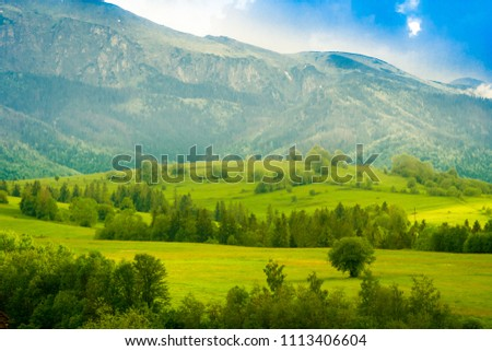 Panoramic view of beautiful landscape in the Tatra Mountain with fresh green meadows #1113406604