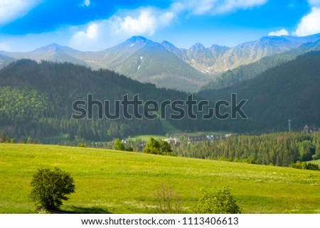 A green glade covered with trees and in the background a mountain range. A beautiful landscape. #1113406613