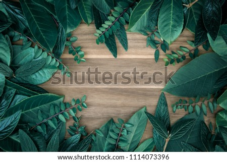 Creative layout made of green leaves. on wooden board. Flat lay. #1114073396