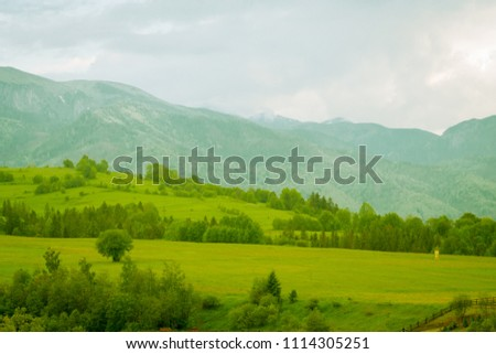 green mountain meadow with mountain range in the background #1114305251