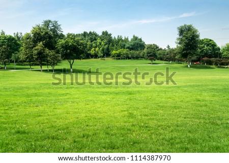 Public park in city #1114387970